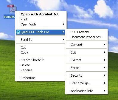 Debenu PDF Tools Pro screenshot